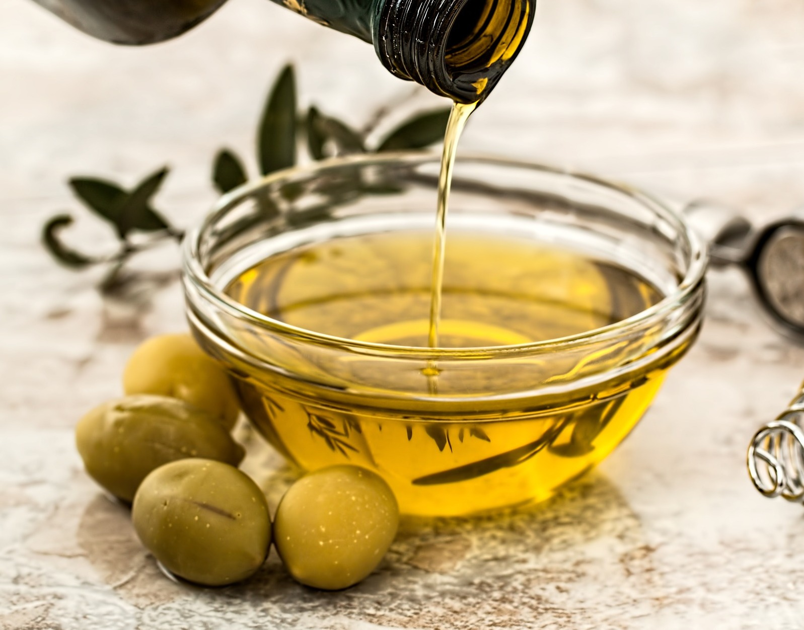 Integrated Olive Oil farm Business