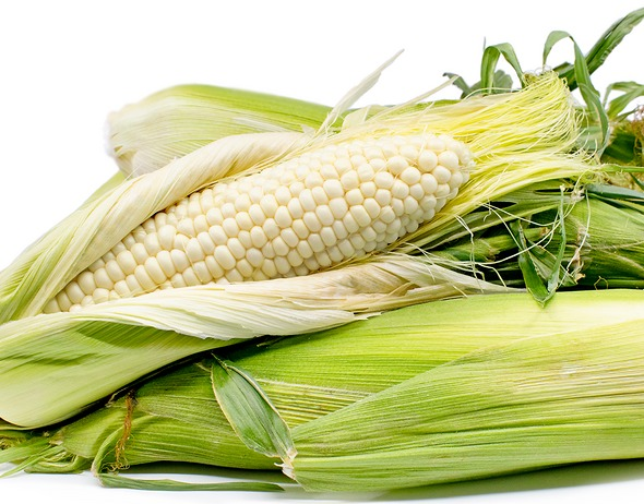 White corn to India