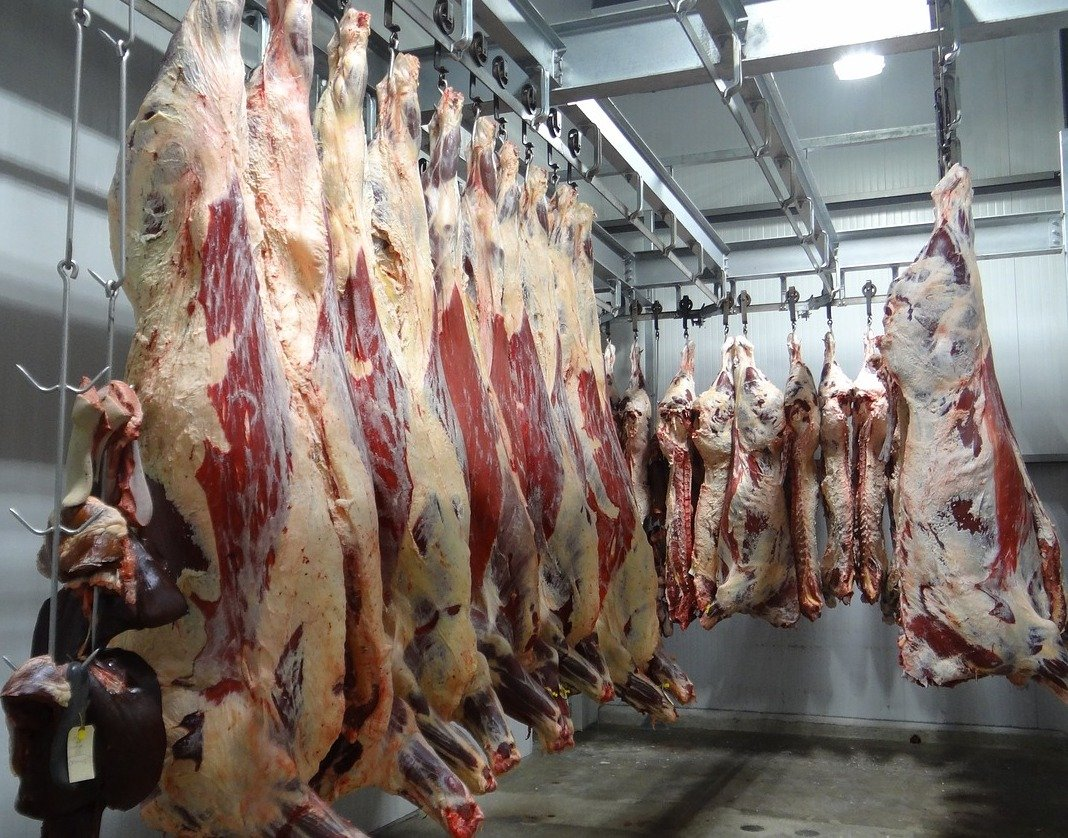 Meat processing / Distribution, SE Asia, EU
