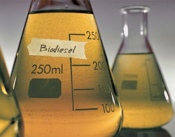 Biodiesel Blends Urgent Need