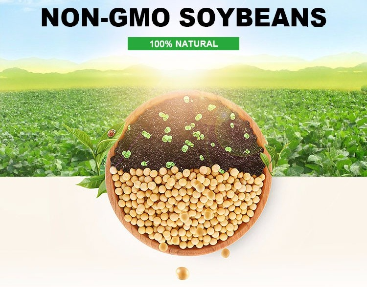 NON-GMO Soybeans for human consumption